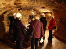 discover-2-malt-cross-cave